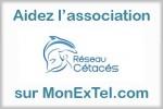 Soutenez l'association Réseau Cétacés